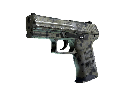 Souvenir P2000 | Granite Marbleized (Field-Tested)